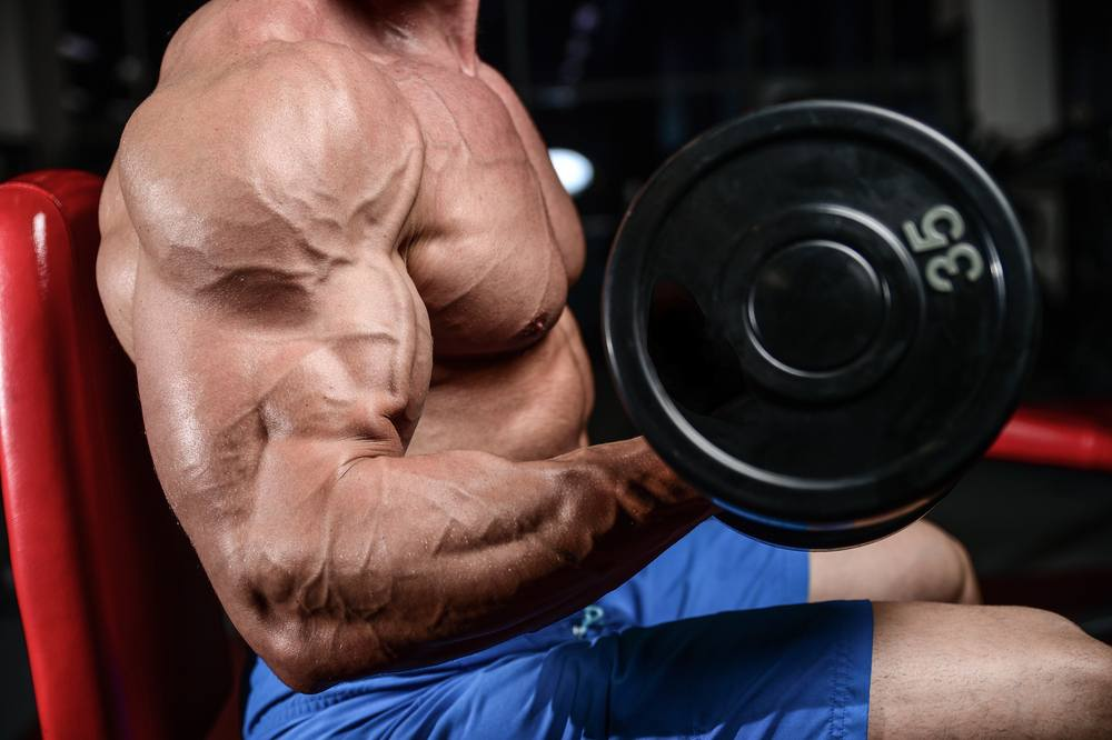 The Importance of Testosterone Steroids - Rufa Fish Spa